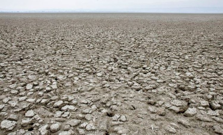 desertification-in-india