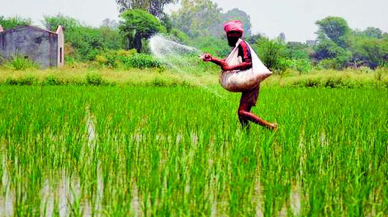 challenges-in-rural-non-farm-sector