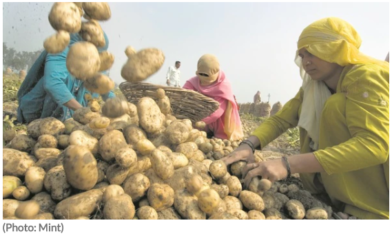 double-the-income-of-farmers-and-farm-laborers