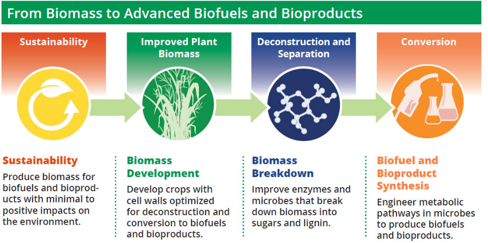 biofuel-from-microorganisms