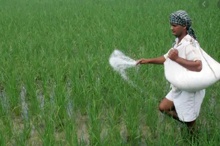 cabinet-approves-fixation-of-nutrient-based-subsidy-nbsrates-summary