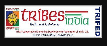 digital-campaign-by-trifed-for-tribal-gatherers-summary