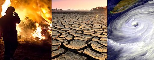 climate-crisis-need-response-similar-to-covid-19