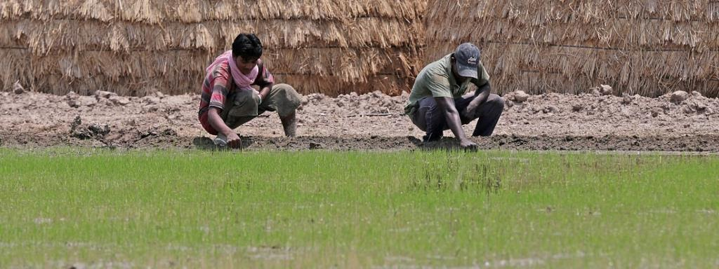 green-ag-project-to-ensure-sustainable-agriculture