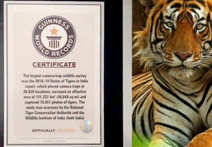 indias-tiger-census-of-2018-sets-a-guinness-world-record-summary