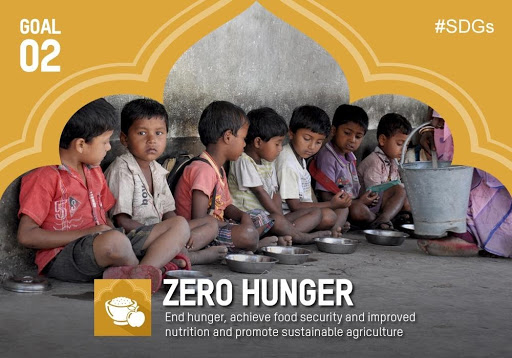 achieving-zero-hunger-by-2030-un-report-th