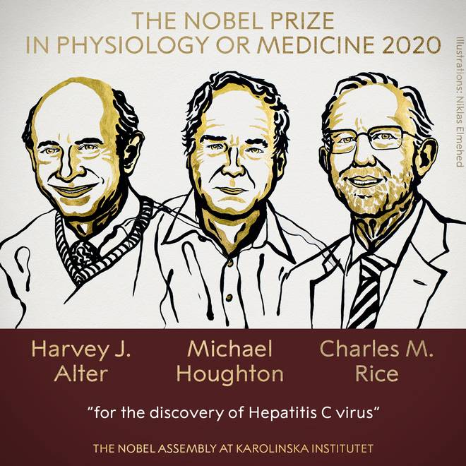 explained-the-discovery-of-hepatitis-c-virus-that-helped-three-scientists-win-the-medicine-nobel
