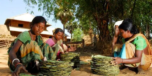 tech-for-tribals-initiative-summary