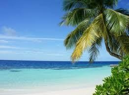what-is-blue-flag-certification-awarded-to-eight-indian-beaches-th