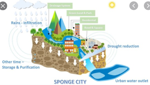 time-for-a-sponge-cities-mission-in-india