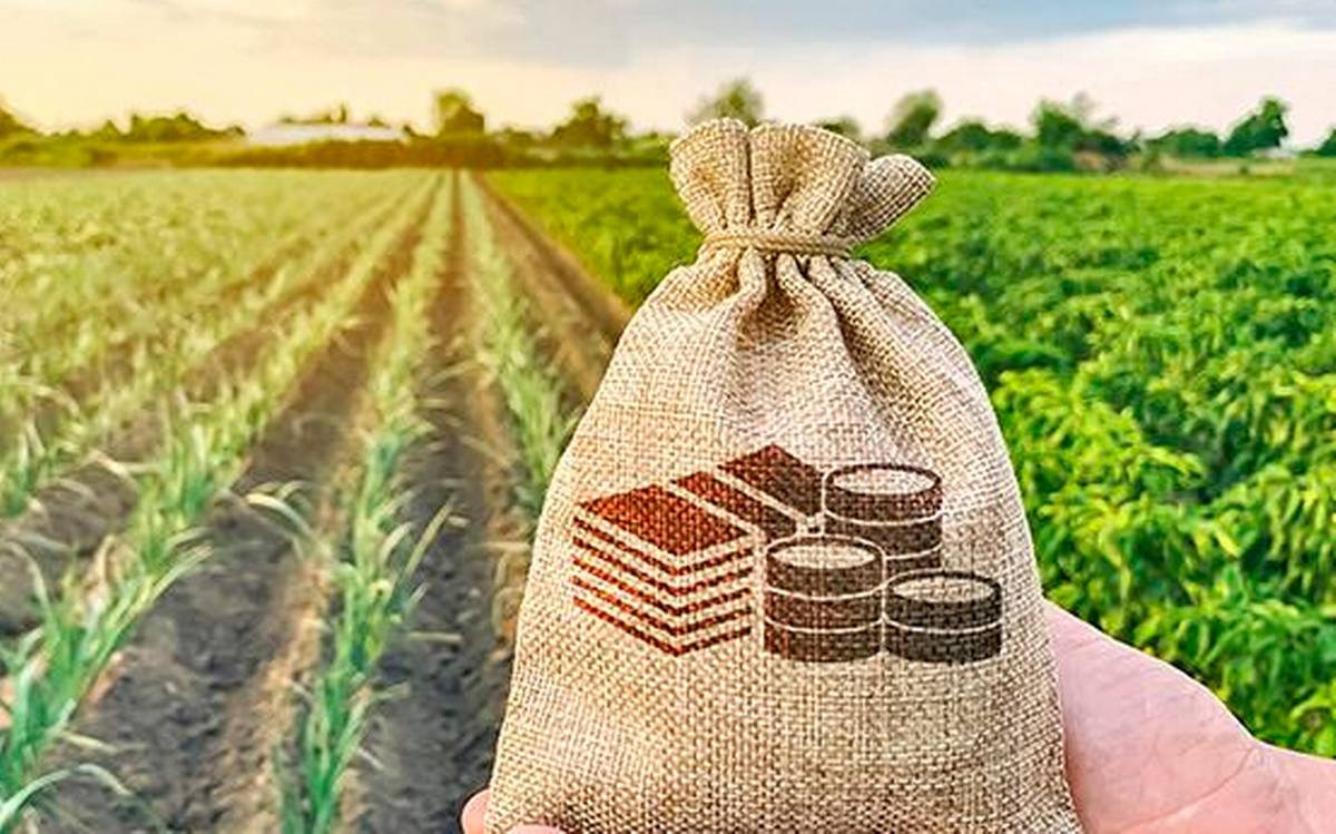 cabinet-extends-agri-infra-fund-loans-to-apmcs