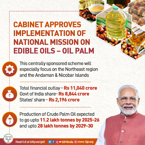 cabinet-approves-implementation-of-national-mission-on-edible-oils-oil-palm