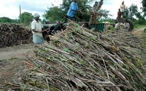 centre-raises-fair-price-of-sugar-cane