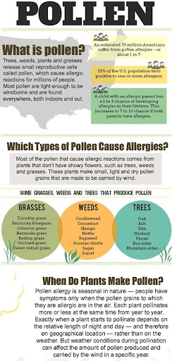tracking-airborne-pollen-to-prevent-allergy