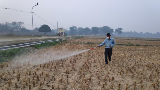 pusa-decomposer-to-check-stubble-burning