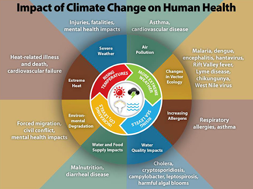 why-health-journals-have-called-for-climate-action
