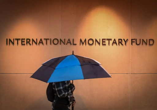 experts-call-for-review-of-imf-role-data-integrity-completing-quota-reforms