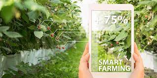 data-revolution-in-indian-agriculture